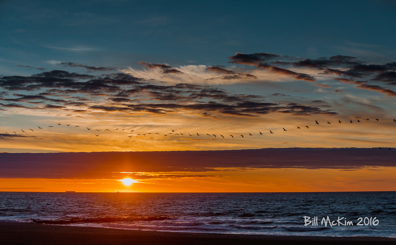 Jersey shore #sunrise-4738